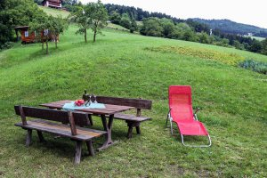 Holiday on the farm in Valle Isarco 2